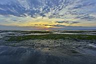 Germany, Bensersiel, North Sea landscape - FDF00230
