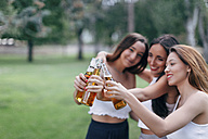 Friends in a park clinking beer bottles - JPF00233