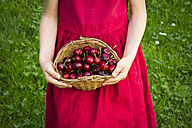 Little girl wearing red summer dress holding basket of cherries, partial view - LVF06179
