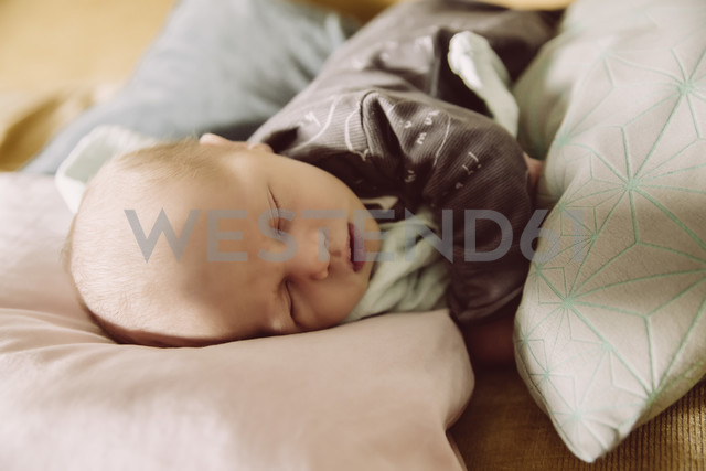 Newborn baby lying and napping on couch between pillows - MFF03673