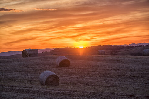 Italy, Tuscany, Val d'Orcia, straw bales on field at sunset - LOMF00593