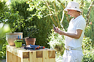 Woman taking cell phone picture of potted oleander at table in garden - DIKF00245