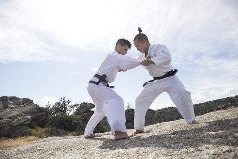 Men doing combat exercises during a martial arts training - ABZF02108