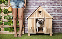 Woman standing next to french bulldog inside wooden dog house - RTBF00928