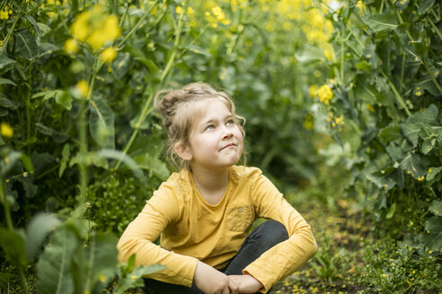 Confident girl sitting in rape field - MOEF00004