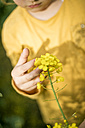 Close-up of girl examining plant in rape field - MOEF00010