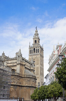 Spain, Andalusia, Sevilla, cathedral and Torre Giralda - HLF01013