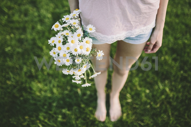 Woman holding bunch of daisies, partial view - GIOF02833 - Giorgio Fochesato/Westend61