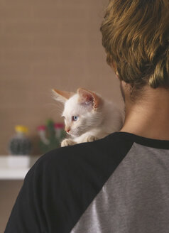 Back view of man with kitten on his shoulder - RTBF00973