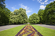 Poland, Warsaw, Saxon Garden in spring, lawn with flower bed, alleys and trees - ABOF00222