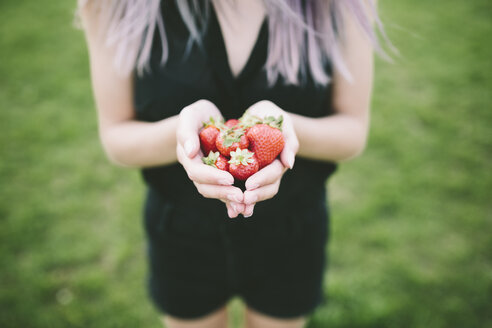 Woman's hand holding strawberries - GIOF02908