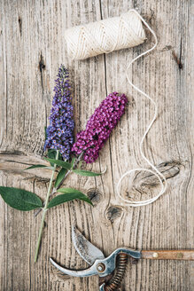 Buddleja flowers with pruner on woodden background - IPF00399