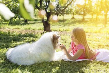 Girl lying with dog on meadow - SHKF00763