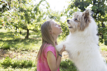 Girl playing with dog on meadow - SHKF00769
