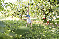 Girl doing a cartwheel on meadow - SHKF00781