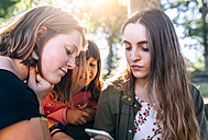 Three girls using smartphone outdoors - MGOF03450