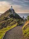 New Zealand, South Island, Southern Scenic Route, Catlins, Nugget Point Lighthouse - STSF01248