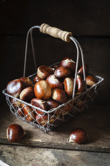 Sweet chestnuts in wire basket - EVGF03237
