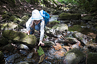 Little girl playing at brook in the woods - DIKF00259