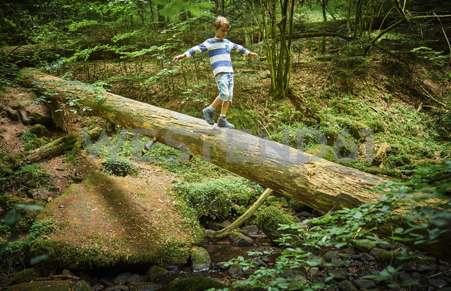 Little girl balancing on tree trunk in the woods - DIKF00262