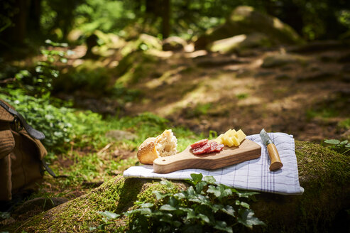 Snack with bread, cheese and salami in the woods - DIKF00265
