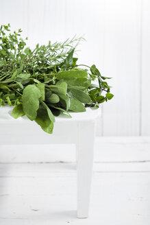 Fresh herbs - CZF00292