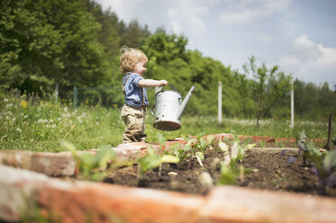 Little boy in the garden watering seedlings - HAPF02014