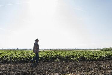 Senior farmer walking in front of a field - UUF11192