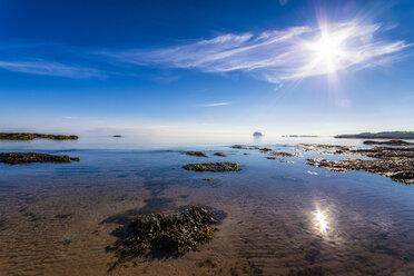 UK, Scotland, North Berwick, view view to Bass Rock - SMAF00798