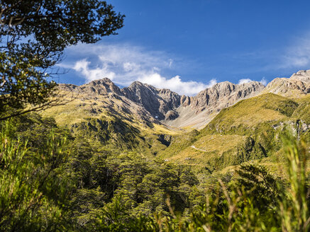 New Zealand, South Island, Canterbury Region, Arthur's Pass National Park, Arthur's Pass - STSF01277