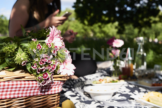 Healthy picnic in a park in summer - IGGF00029