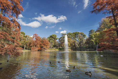 Spain, Madrid, Retiro Park in autumn - DHCF00121