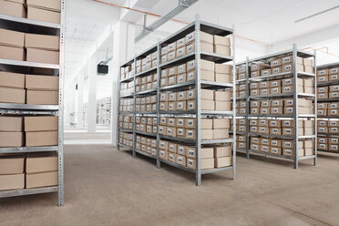 Cardboard boxes on shelves in a factory - RHF02029