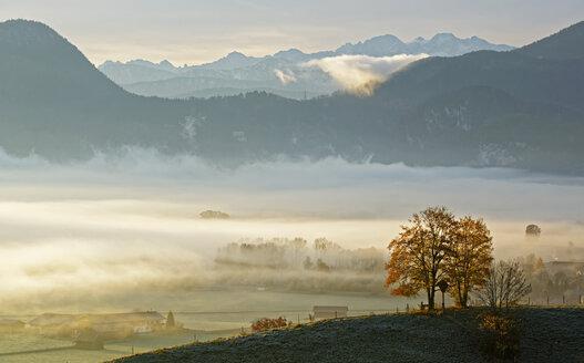 Germany, Grossweil, sunrise above Loisachmoor - LHF00533