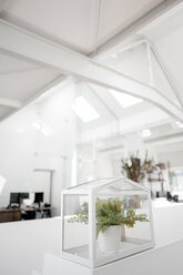 Plant in glass box on railing in office - KNSF02347