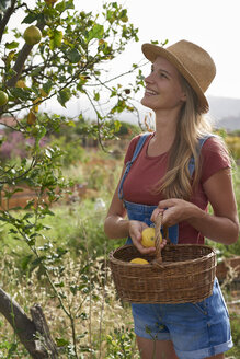 Young woman picking lemons - PACF00055