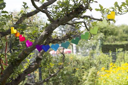 Heart-shaped garland made of paper hanging in garden - CMF00706