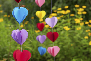 Heart-shaped garlands made of paper hanging in garden, close-up - CMF00709