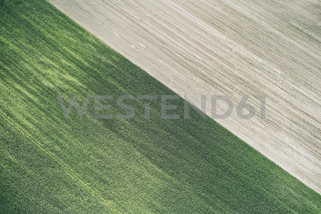 USA, Corn field and freshly harvested field in Western Nebraska - BCDF00306
