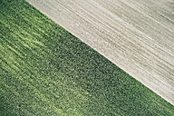 USA, Corn field and freshly harvested field in Western Nebraska - BCDF00306
