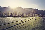 Germany, Bavaria, Traunstein, two men crossing a field - BMAF00346