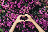 Woman's hands shaping heart in front of pink blossoms - JPF00272
