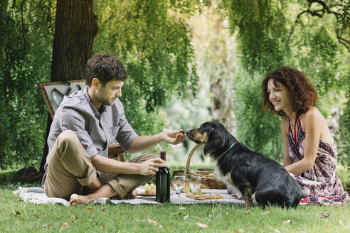 Couple with dog having a picnic in a park - ALBF00157