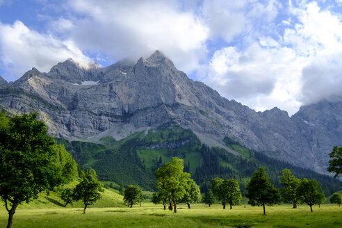 Austria, Tyrol, Karwendel, Riss Valley, Eng, Ahornboden, maple trees - LBF01631