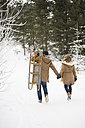 Back view of young couple with sledge in winter forest - HAPF02046