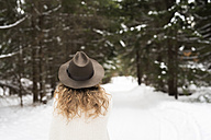 Back view of young woman wearing hat and knit pullover in winter forest - HAPF02052