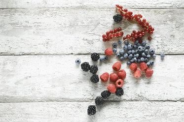 Various berries on wood - ASF06103