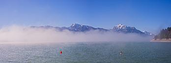 Germany, Bavaria, Allgaeu, morning mood at Lake Forggensee - WGF01108