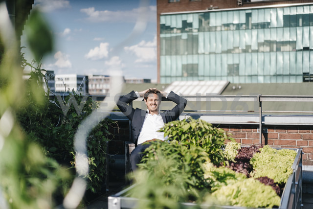 Businessman relaxing in his urban rooftop garden - KNSF02783