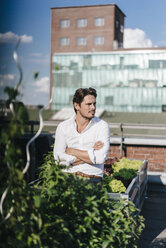 Businessman cultivating plants in his urban rooftop garden - KNSF02786